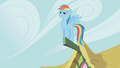 Rainbow Dash standing on a part of a ceiling S1E3.png