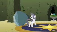 Rarity 'what do you mean boulder' S2E01