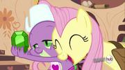 S03E11 Fluttershy dziękuje Spike'owi