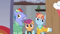 Scootaloo, Bow, and Windy enter Rainbow's old room S7E7.png