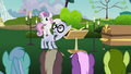 Sweetie Belle jumps on Mr. Waddle's back S2E17.png
