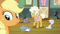 AJ and Goldie hear Apple Bloom behind S9E10