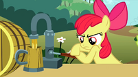 Apple Bloom pours cider S2E15
