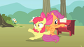 Apple Bloom trips S1E18.png