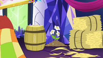 Applejack's decorations S5E3