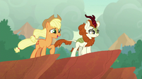 Applejack in complete awe of the view S8E23