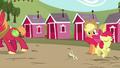 Applejack sees Apple Bloom hopping; Big Mac walks away S5E17.png