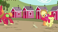 Applejack sees Apple Bloom hopping; Big Mac walks away S5E17