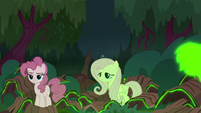 Clones of Pinkie and Fluttershy are born S8E13