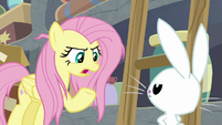 "Fluttershy ""I know you can't talk"" S9E18"