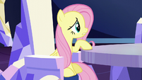 "Fluttershy ""shouldn't we wait for the invitation?"" S6E1"
