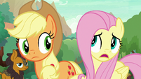 Fluttershy -but you don't speak-- S8E23