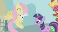 Fluttershy and angel S1E03.png