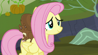 Fluttershy smiling with relief S5E23