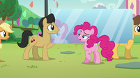 Pinkie --Oh wait, that's me-- S5E24