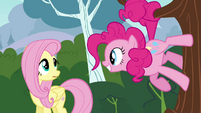Pinkie Pie standing on a tree smiling at Fluttershy S4E16