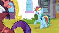 Rainbow Dash -under Canterlot Castle- S9E4
