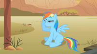 Rainbow Dash in pain S01E21