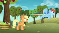 Rainbow Dash speeds away from Applejack S8E5