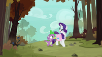 "Rarity ""the way to the phoenix nests"" S8E11"