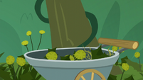 Small amount of weeds collected S5E16