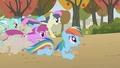 2 versions of Rainbow Dash S01E13.png