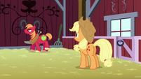 Big Mac walks unhappily S5E17