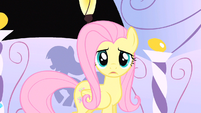 Fluttershy cute no! S1E20