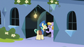 Mail Pony delivering mail to Sapphire Joy S8E8.png