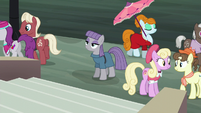 Maud Pie at Manehattan giving a blank stare S6E3