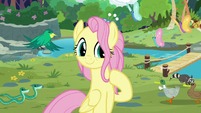 Older Fluttershy at Sweet Feather Sanctuary S9E26