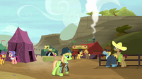 Ponies enjoying the Appleloosa rodeo S5E6