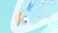 Rainbow Dash comes to a halt S1E16
