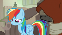 Rainbow Dash crying for A. K. Yearling S7E18