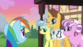 Rainbow Dash scolded by hospital staff S2E16.png