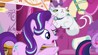 Starlight Glimmer asks Rarity what she's doing S7E19