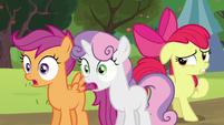Sweetie Belle and Scootaloo shocked; Apple Bloom feeling nervous S5E17
