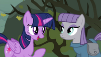 Twilight apologizing to Maud S4E18