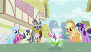 200px-S2E06 Zecora and ponies looking at the flower