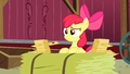 Apple Bloom telling Granny Smith all her RSVPs S3E8.png