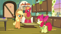 Applejack -anytime Big Mac and I ever asked- S7E13