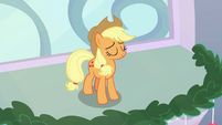 Applejack wins the second challenge BGES1