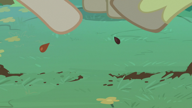 File:Bright Mac and Pear Butter plant their seeds S7E13.png