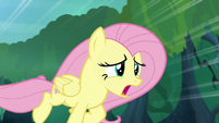 "Fluttershy ""it must be in horrible agony"" S8E18"