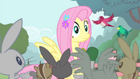 Fluttershy hears Pinkie S4E14