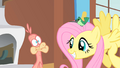 Fluttershy smiles S01E22.png