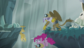Gilda pulling Pinkie and Rainbow to safety S5E8.png
