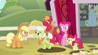Granny Smith mentions Goldie Delicious S4E09