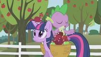 La manzana golpeando en la cabeza a Twilight S1E3I04