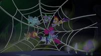 Main cast stuck in a spider web S5E21